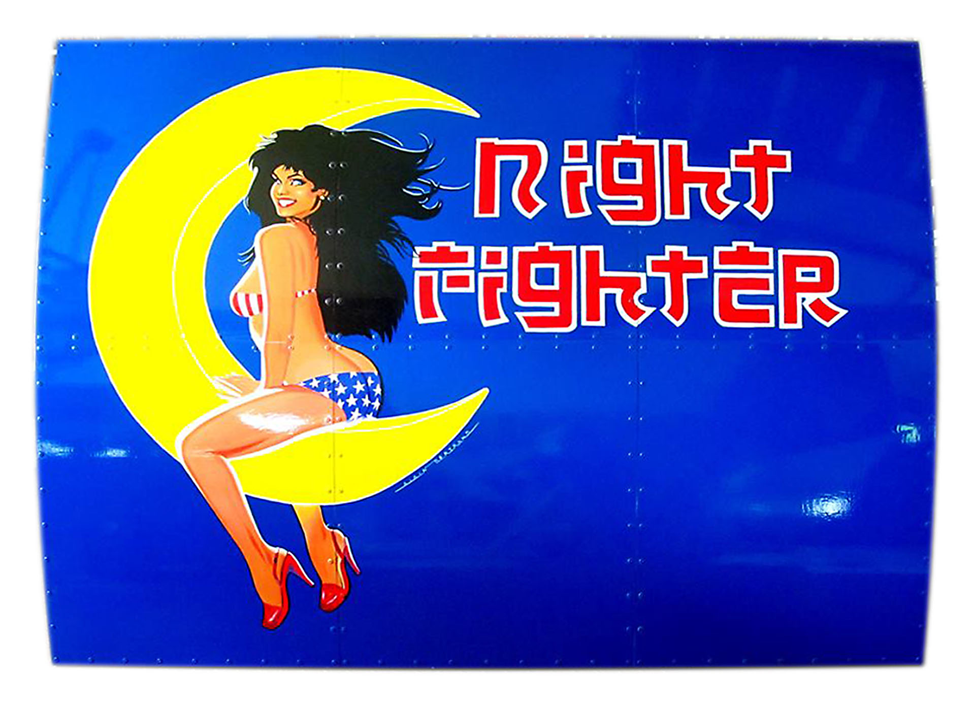 NOSE ART NIGHT FIGHTER 120 X 160 CM